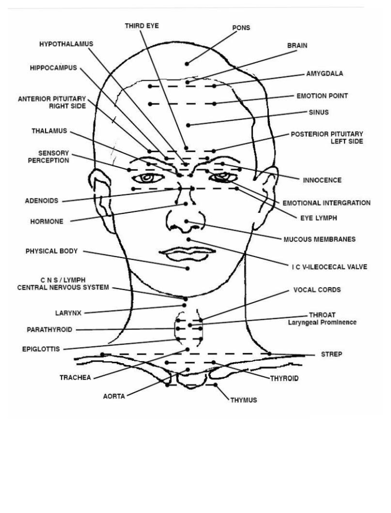 emotional body chart